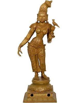 Superfine Bronze Cast of Goddess Andal From South India