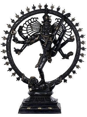 The Tandava Of Shiva (Large Size Nataraja)