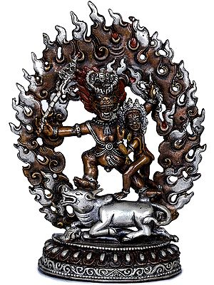 Tibetan Buddhist Deity Yamantaka With Yami - Made in Nepal