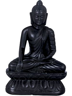 Tibetan Buddhist Lord Buddha Carved in Stone