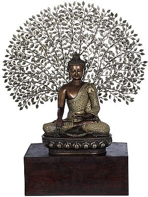 Tibetan Buddhist Lord Buddha Seated on Wooden Base with Tree in Background- Large Size