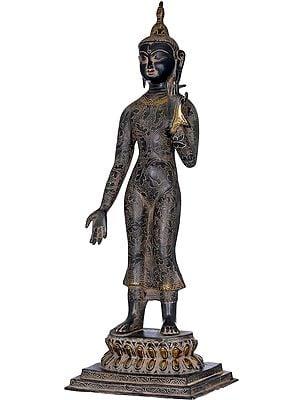 Tibetan Buddhist Standing Buddha