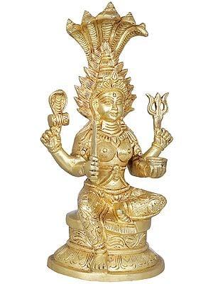 Mariamman - Goddess Durga of South India