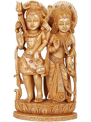Standing Shiva-Parvati Raise Their Hands In Blessing