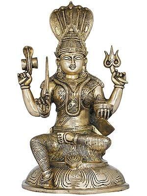 South Indian Goddess Durga - Mariamman