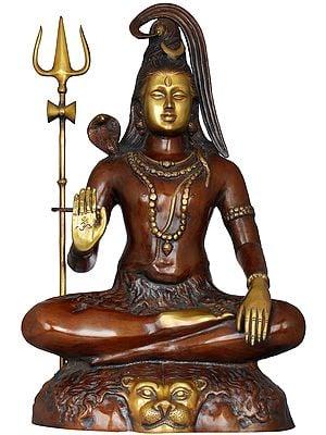 Dhyani Lord Shiva As Paramaguru Adinatha