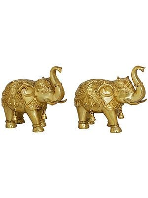 Pair of Decorated Elephants with Bells and Upraised Trunks (Auspicious According to Vastu)