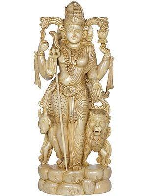 Pristine Ardhanarishvara