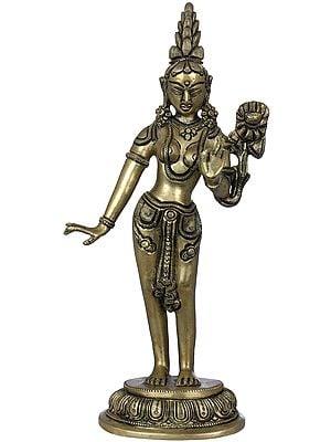 Standing Goddess Tara - Tibetan Buddhist
