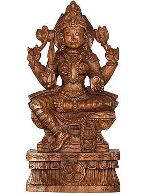 Goddess Mariamman (South Indian Durga)