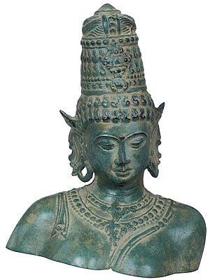 Small Size Goddess Parvati Bust