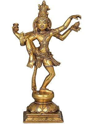 Shiva's Tandava - 1