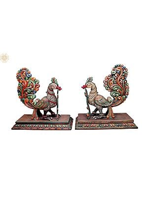 Large Size Pair of Beautifully Carved Peacocks