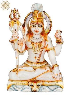 Lord Shiva Seated on Mount Kailasha