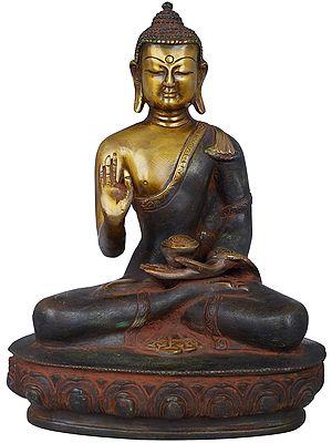 Tibetan Buddhist Lord Buddha in Multi Hue
