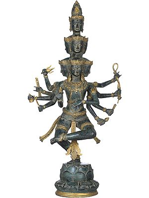 Cosmic Shiva Dancing on Lotus