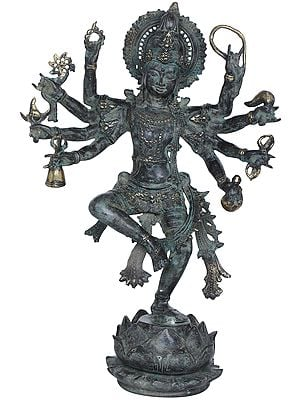 Lord Shiva Dances Upon The Mouth Of A Lotus