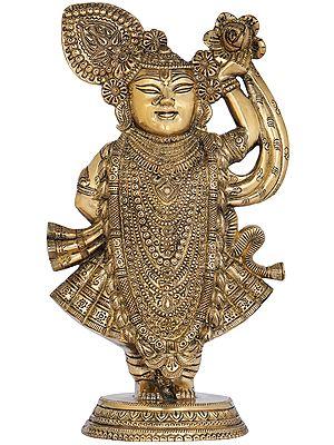 Shri Krishna as Shrinath Ji - Fine Quality