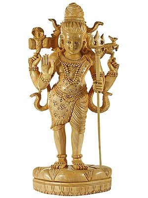 Standing Chaturbhuja Lord Shiva