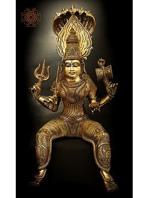 Goddess Mariamman (Durga of South India)