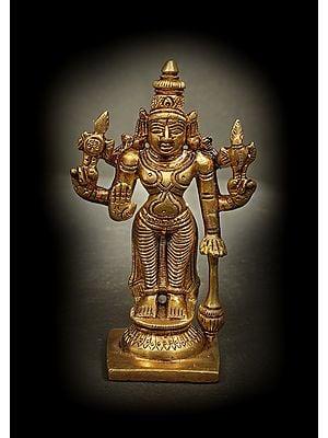 Small Chaturbhuja Bhagawan Vishnu
