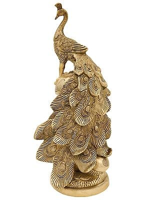 """15"""" Designer Peacock Showpiece on a Mushroom Plant 