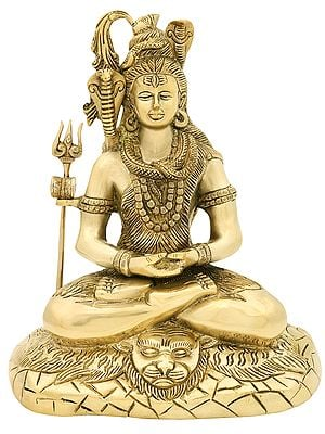 Lord Shiva in Deep Austerity