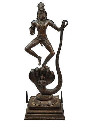 The Life-Giving Imprint Of Krishna's Foot On Kaliya