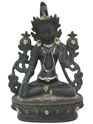 Tibetan Buddhist Deity Holy Green Tara