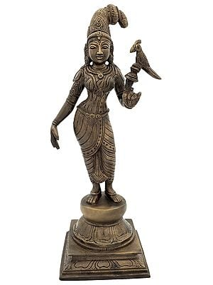Apsara With a Parrot