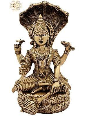 Bhagawan Vishnu Seated on Sheshnag