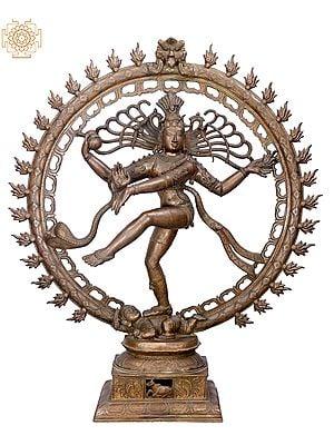 "36"" Large Nataraja   Handmade   Madhuchista Vidhana (Lost-Wax)   Panchaloha Bronze from Swamimalai"
