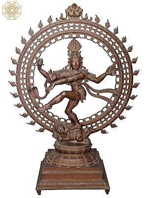 "47"" Large Nataraja | Handmade | Madhuchista Vidhana (Lost-Wax) | Panchaloha Bronze from Swamimalai"