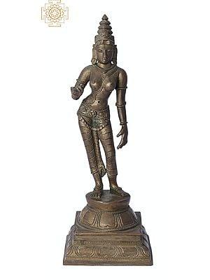 "9"" Sivagami (Goddess Uma) | Handmade | Madhuchista Vidhana (Lost-Wax) | Panchaloha Bronze from Swamimalai"