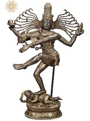 "57"" Dancing Shiva | Nataraja | Large Shiva Tandava | Lord of The Dance | Brass Statue | Handmade | Made In India"