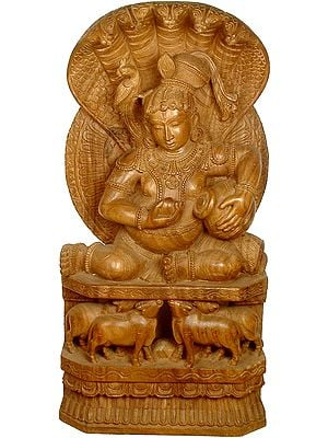 Navaneeta Krishna