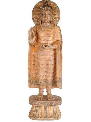 Buddha in Abhaya Mudra
