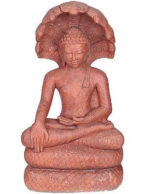 Large Size  Buddha Shielded by Muchalinda