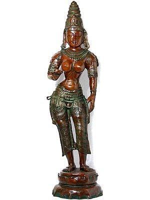 Large Size Goddess Parvati