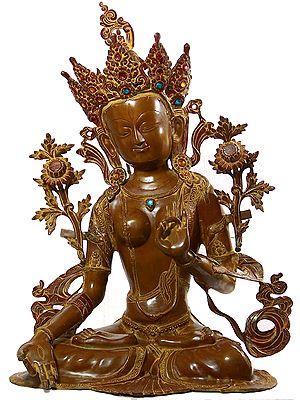 Goddess White Tara with Seven Eyes Who Bestows Long Life on Her Devotees (Tibetan Buddhist Deity)