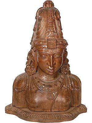 Bust of Lord Shiva with Ardha-Narishvara Attributes: A Wood-Carving