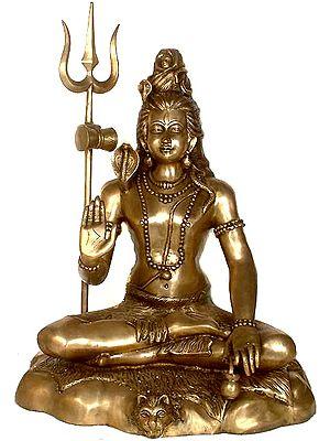 Large Size Lord Shiva