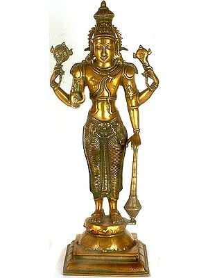 Lord Vishnu - The Sustainer of Universe