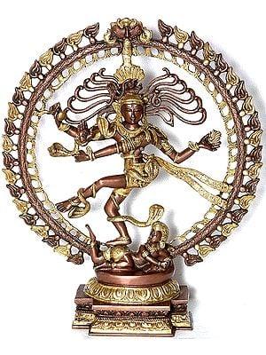 Nataraja - The Cosmic Dancer