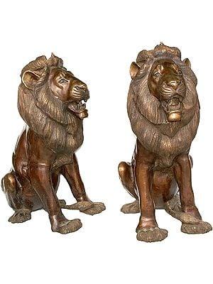 Lion-Pair