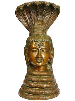 Shiva as Nagaraja