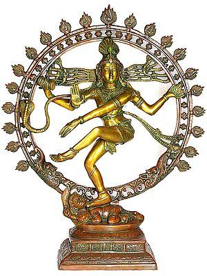 Nataraja - King of Dancers