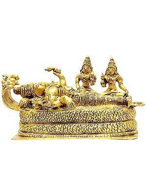 Sheshshayi Vishnu