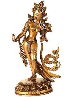 (Tibetan Buddhist Deity) Standing Tara