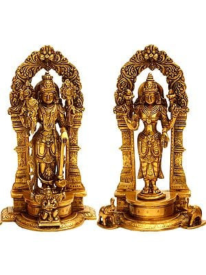 Lord Vishnu and Lakshmi Ji with Floral Aureole